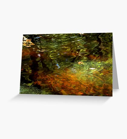 Abstract of the St Croix River 04 Greeting Card