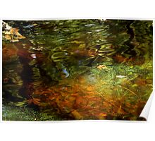 Abstract of the St Croix River 04 Poster