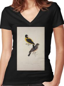 John Gould A Century of Birds from the Himalaya Mountains 1831 045 Coccothraustes Icterioides Women's Fitted V-Neck T-Shirt