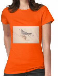 John Gould The Birds of Europe 1837 V1 V5 419 Arctic Tern Womens Fitted T-Shirt