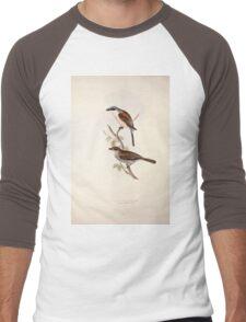 John Gould The Birds of Europe 1837 V1 V5 069 Red Backed Shrike Men's Baseball ¾ T-Shirt