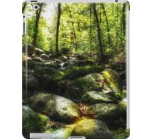 The Emerald Forest iPad Case/Skin