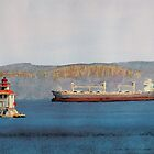 Main Lighthouse Thunder Bay by Douglas Hunt