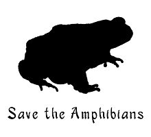 .Save the Amphibians! Save the Frogs!  Photographic Print