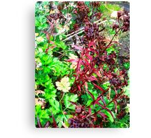 Leaves in an Irish Hedgerow Canvas Print