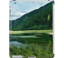 Green Mountains iPad Case/Skin