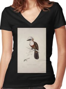 John Gould A Century of Birds from the Himalaya Mountains 1831 018 Garrulus Leucolophus Women's Fitted V-Neck T-Shirt