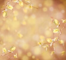 young spring leaves on blurred background  by Arletta Cwalina