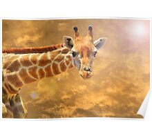 Giraffe Background - African Wildlife - The Golden Beauty in Nature Poster