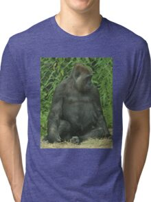 He don't want me no more Tri-blend T-Shirt