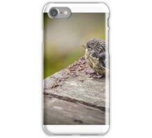 ein kleiner Vogel iPhone Case/Skin