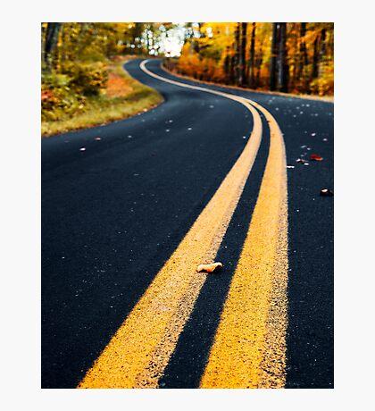 road in autumn Photographic Print
