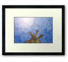 Giraffe Background - African Wildlife Splendor - Blue Wonder and Colors in Nature Framed Print