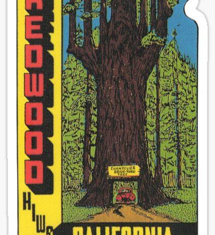 Redwood Highway Drive Thru Tree California Vintage Travel Decal Sticker