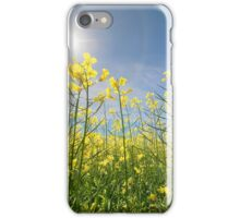 Sun Halo Over The Canola iPhone Case/Skin