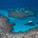 Great Barrier Reef by Paul Barnett