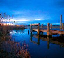 End of the Pier by Nicole Jeffery