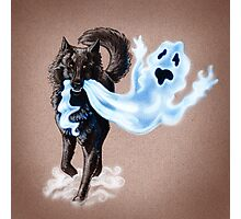 Sheperd of Ghost Photographic Print