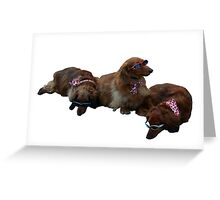 Fashion Dogs Greeting Card
