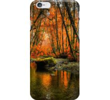 I'll Take It ~ Fall Colors On Whittaker Creek ~ iPhone Case/Skin