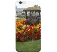 orange sprey iPhone Case/Skin