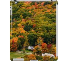 Colorful New Hampshire  iPad Case/Skin