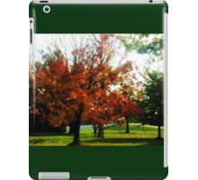 AUTUMN IN OHIO, U.S.A. iPad Case/Skin