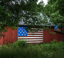 Patriotic Farm by Colleen Drew