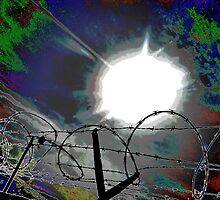 Barbed Wire by Gail Jones