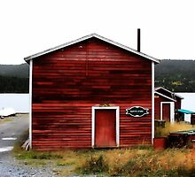 Pappy's Store - Bide Arm, Newfoundland/Labrador by Vickie Emms