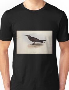 John Gould The Birds of Europe 1837 V1 V5 421 Noddy Tern Unisex T-Shirt