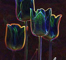 """""""Tulips in Neon"""" by Gail Jones"""