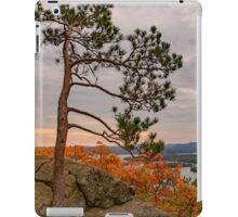 Eagle cliff pines iPad Case/Skin