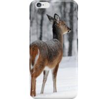 Snowy White-tailed Deer iPhone Case/Skin