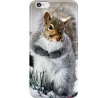 Squirrel in Snow iPhone Case/Skin