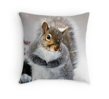 Squirrel in Snow Throw Pillow