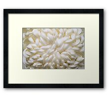 Life in Full Bloom Framed Print