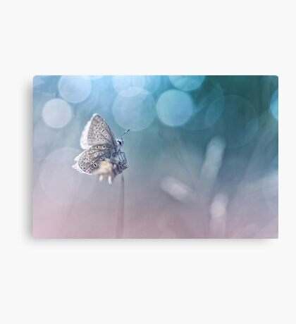 Fresh Blue and a salty smell... Canvas Print