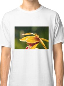 Macro shot of ant walking on a coloured orchid flower Classic T-Shirt