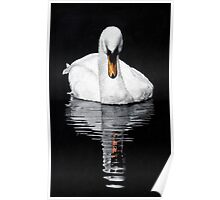 Tranquil Reflection Poster