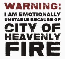 City of Heavenly Fire by wessaandjessa