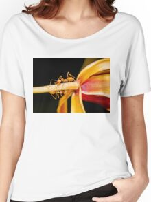 Macro shot of ant walking on a coloured orchid flower Women's Relaxed Fit T-Shirt