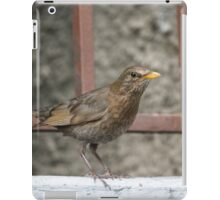 bird on wall iPad Case/Skin