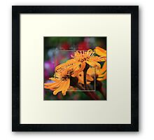 Color Pizzaz With Collaged Textures Framed Print