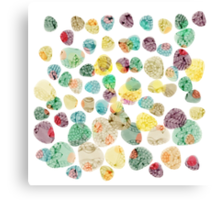 Colorful Fossils in Stones Canvas Print
