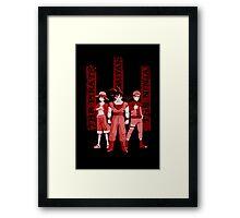 the pirate - the saiyan - the ninja Framed Print