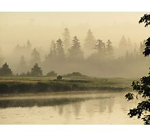 Misty Green Photographic Print