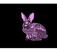 Pink Rabbit Photographic Print