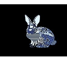 Blue Rabbit Photographic Print