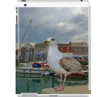 Padstow, Cornwall, UK, The Seagull ~ Atlantic Coast iPad Case/Skin